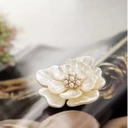 Segė balta gėlė