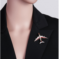 Segė lėktuvas