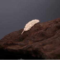 Ženkliukas maža plunksna