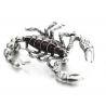 Sagė skorpionas